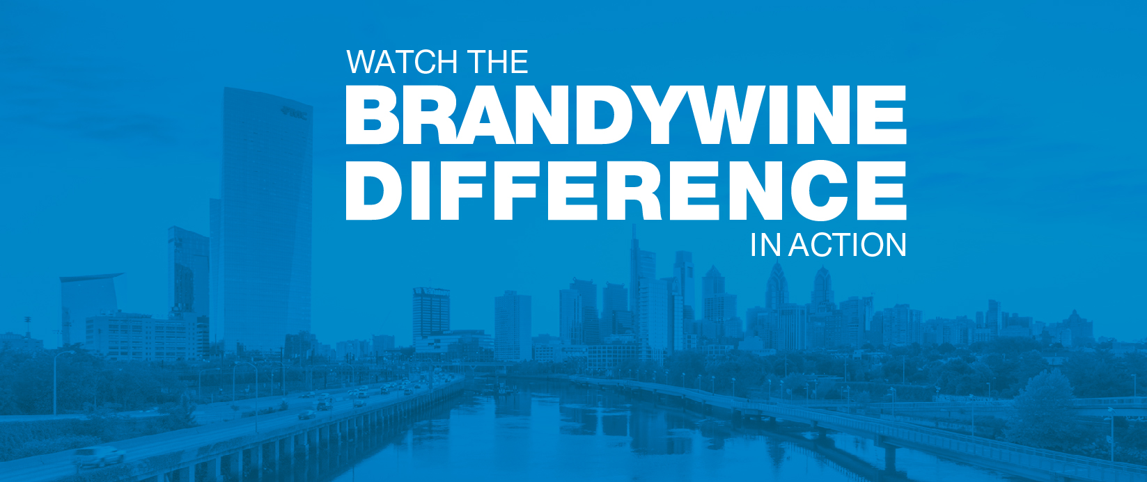 Brandywine Difference in Action