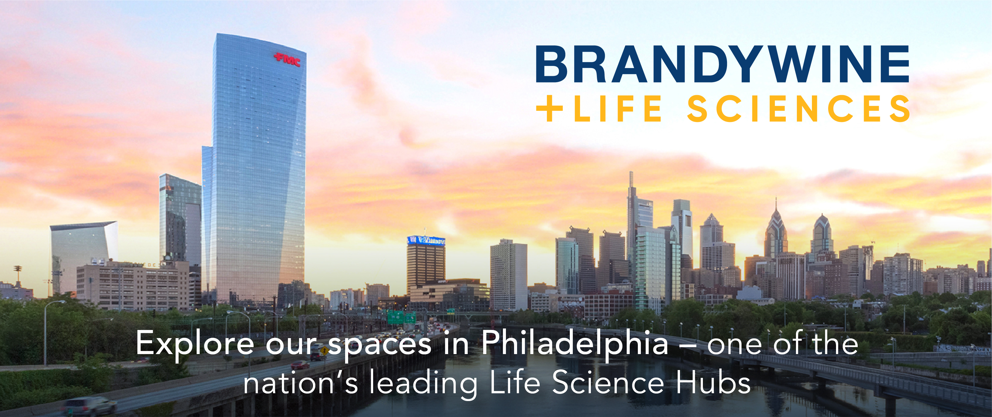 Brandywine Life Sciences